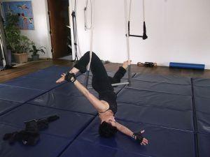 c35-shahin-trapeze9.jpg