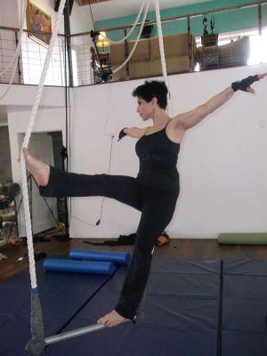 c7-shahin-trapeze4.jpg