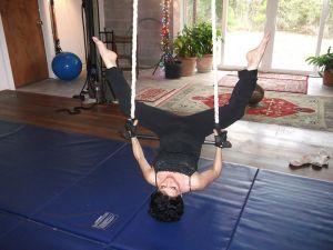 shahin-trapeze12.jpg
