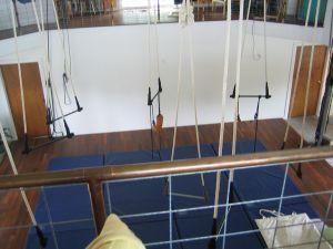 shahin-trapeze14.jpg